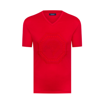 V-Neck T-Shirt Colour: R012 Size: M